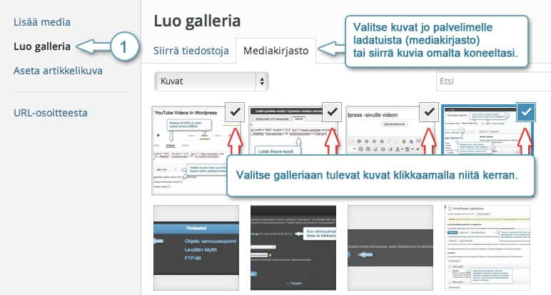 Wordpress-galleria-1